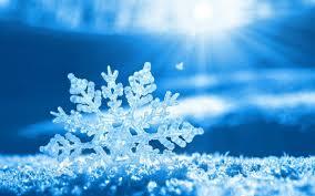 福岡、雪つもる!!