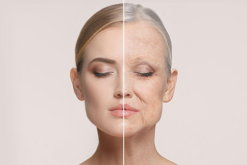 毛細血管が老けると、人は老いていく