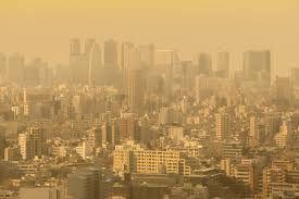 空気中の汚染物質によるアレルギー