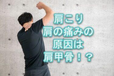 肩こり、肩の痛みの原因に肩甲骨!?【肩甲骨編】